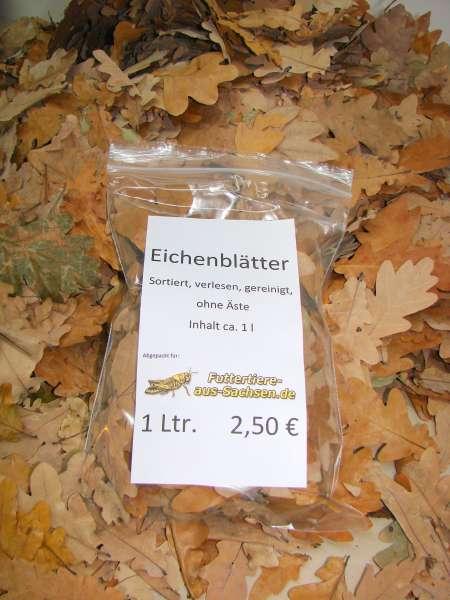 Eichenblätter, ca. 1 l