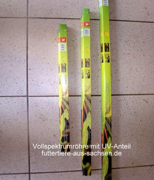 Vollspektrum-Röhre mit UV 15 W